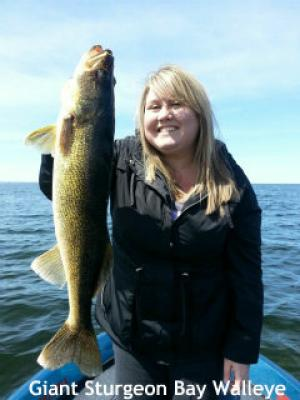 Giant Sturgeon Bay walleye for my wife Michelle