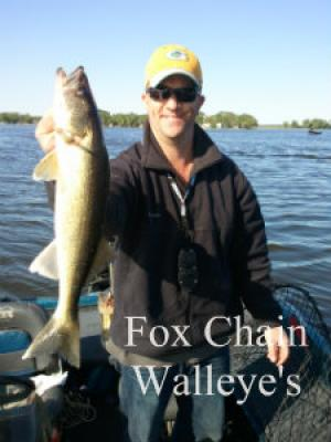 Fox Chain