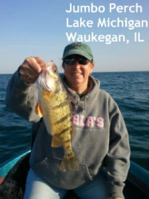 Doug kloet illinois and wisconsin fishing guide service for Lake michigan perch fishing report