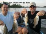 Fox Chain, Illinios clients with 4 of the many white bass May 2012